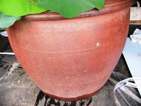 蓮鉢高さ30×幅23 内径33×外形41