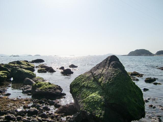 CIMG1157海辺