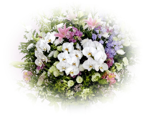 花篭ファレノ