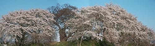 09-04-19会津若松・神指城跡