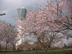 09-04-13いわき・マリンタワーと三崎公園