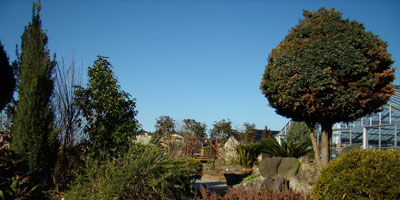 ガーデンと青空