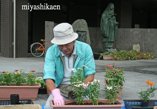 松任駅南広場のプランター植え替え