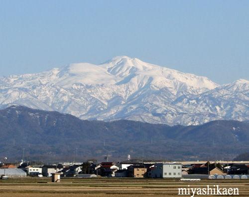 徳光地区からの白山