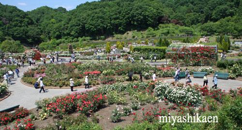 岐阜花フェスタ記念公園