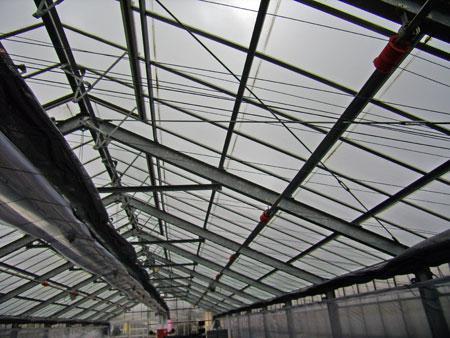温室の屋根ガラス
