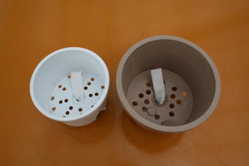 上から見たシクラメンの鉢