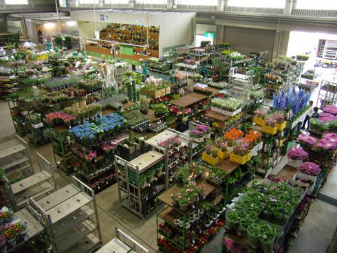 金沢市公設花き市場