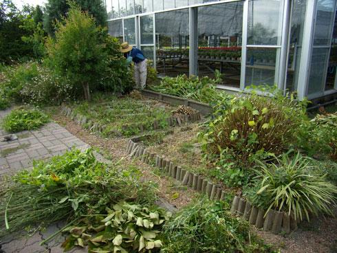 ガーデンの剪定