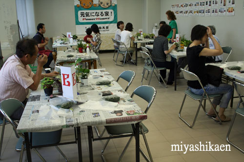 日本美装で苔玉教室
