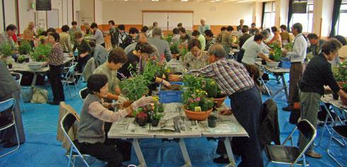 金沢市彦三公民館の寄せ植え教室