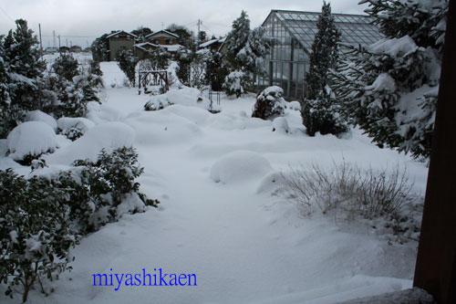 大雪 10.01.14