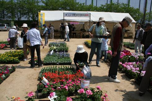 白山市「緑と花のフェスティバル2008」花苗市
