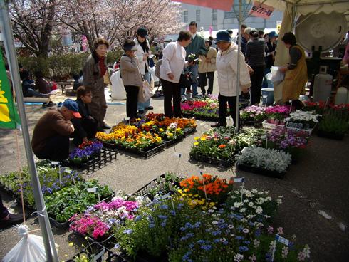 宮子花園の花苗市