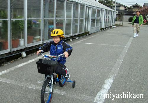 自転車に乗る優太