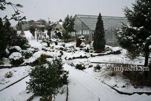 ガーデンの雪景色 10.02.03