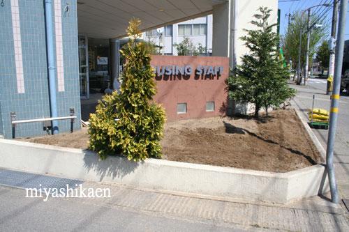 株式会社 ハウジングスタッフの花壇