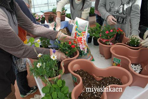 ハーベリーポットで花とハーブの寄せ植え
