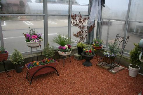 売場温室の新空間