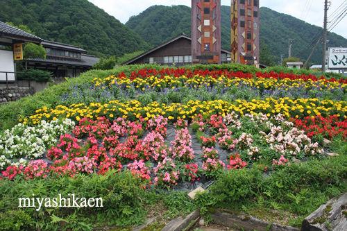 吉野工芸の里の花壇