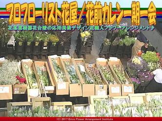プロフローリスト花屋(3)/花前カレン画像02