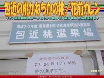 包近桃選果場/花前カレン画像02