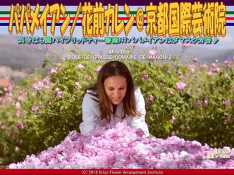 HTパパメイアンDamask/京都国際芸術院画像02 ▼画像クリックで640x480pxlsに拡大@エリ子花前カレン