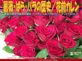 バラ・薔薇・ばらの歴史(3)/花前カレン画像01