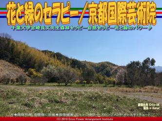 花と緑のセラピー/京都国際芸術院画像02 ▼画像クリックで640x480pxlsに拡大@エリ子花前カレン