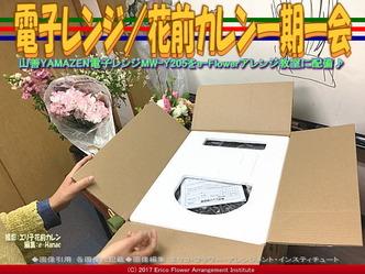 電子レンジ(3)/花前カレン一期一会画像02