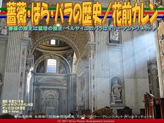 薔薇・ばら・バラの歴史/花前カレン画像03