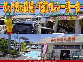 めっけもん広場(2)/花前カレン一期一会画像01