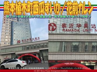 熊本植木町西瓜すいか(3)/花前カレン画像01