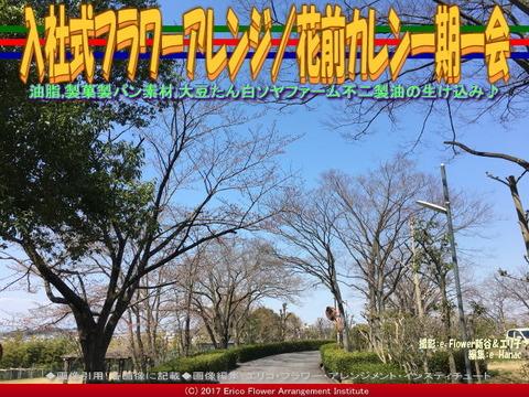 入社式フラワーアレンジ(4) /花前カレン一期一会画像01