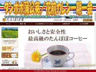 たんぽぽコーヒー/花前カレン画像03