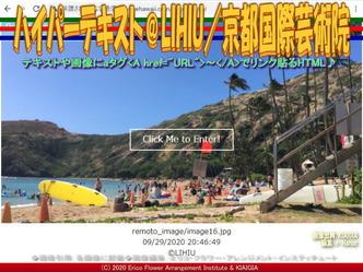 ハイパーテキスト@LIHIU(2)/京都国際芸術院画像01 ▼画像クリックで640x480pxlsに拡大@北洞院エリ子花前カレン