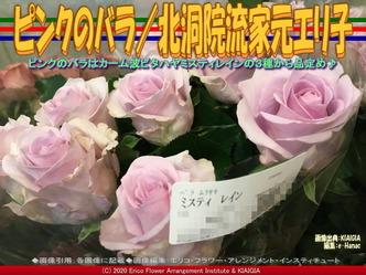 ピンクのバラ(3)/北洞院流家元エリ子画像02 ▼画像クリックで640x480pxlsに拡大@北洞院エリ子花前カレン