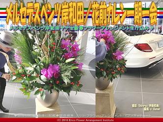 ベンツ岸和田フラワーアレンジ(3)/花前カレン画像03