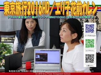 東京旅行2016HD/エリ子花前カレン画像01 ▼画像クリックで640x480pxlsに拡大@エリ子花前カレン
