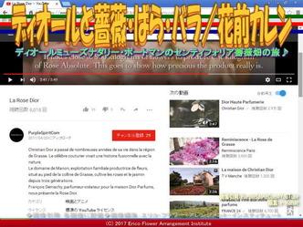 ディオールとバラ(5)/花前カレン画像01