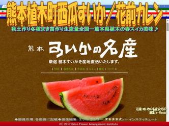 熊本植木町西瓜すいか(9)/花前カレン画像02