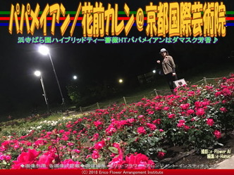 パパメイアン(2)/花前カレン@京都国際芸術院画像02 ▼画像クリックで640x480pxlsに拡大@エリ子花前カレン