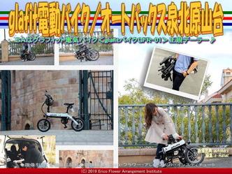 glafit電動バイク(6)/オートバックス泉北原山台画像01 ▼画像クリックで640x480pxlsに拡大@エリ子花前カレン