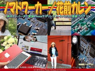 ノマドワーカー(4)/花前カレン画像02