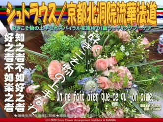 シュトラウス(10)/京都北洞院流華法道画像01 ▼画像クリックで640x480pxlsに拡大@北洞院エリ子花前カレン