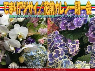 てまりアジサイ(3)/花前カレン画像02