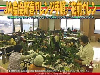 JA農協新春アレンジ手順(4)/花前カレン画像01 ▼画像クリックで640x480pxlsに拡大@エリ子花前カレン