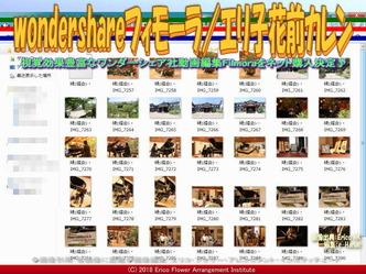wondershareフィモーラ(4)/エリ子花前カレン画像01 ▼画像クリックで640x480pxlsに拡大@エリ子花前カレン
