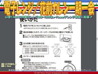 電子レンジ(6)/花前カレン一期一会画像01