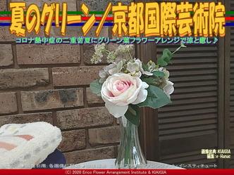 夏のグリーン/京都国際芸術院画像02 ▼画像クリックで640x480pxlsに拡大@北洞院エリ子花前カレン